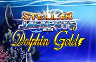 Dolphin Gold -kolikkopelien tähtijättipotit